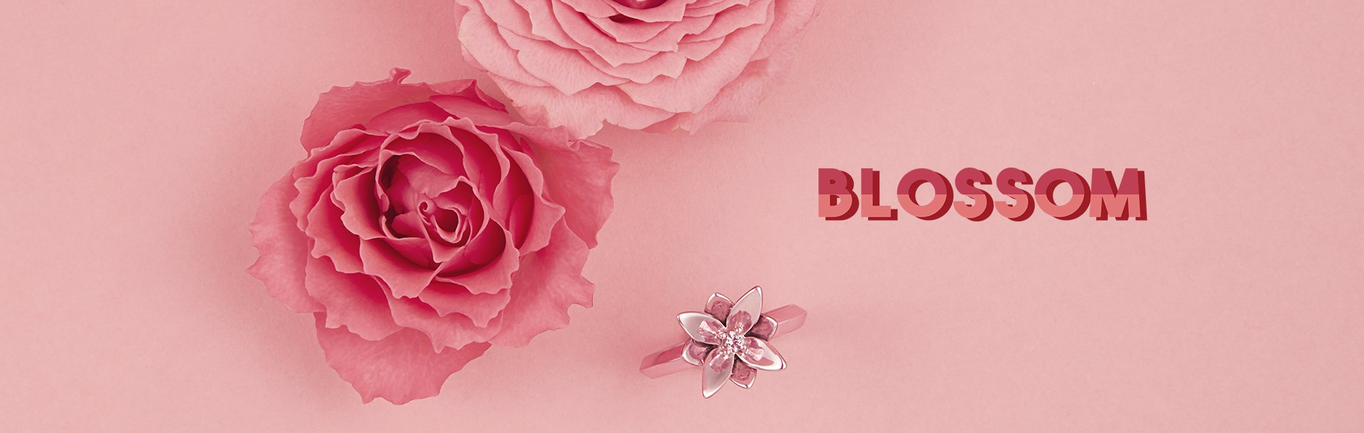 Coleção Blossom Top Banner